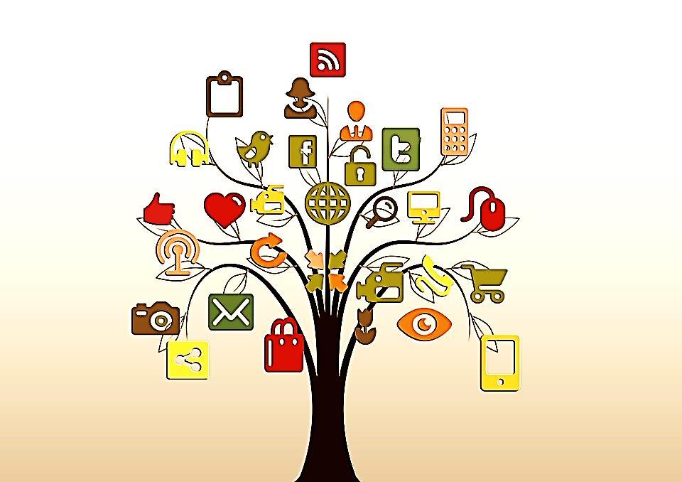 l'arbre réseau couleurs personnalisées